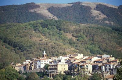 Monte Flavio