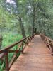 Camminamento del sentiero natura