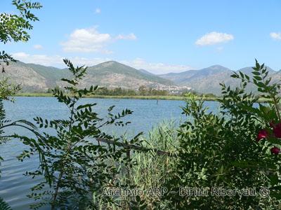 Il lago e la vegetazione circostante
