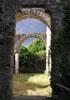 Resti etruschi