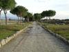 Antica Via Appia - Natura in viaggio 2005