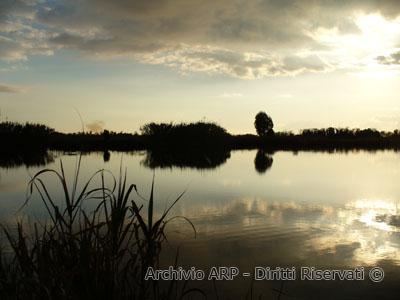 Laghetto degli Alfieri al tramonto