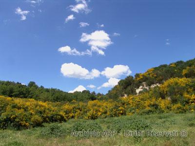 Paesaggio - Pietra Pertusa