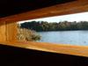 Uno sguardo sul Tevere dal capanno di osservazione birdwatching