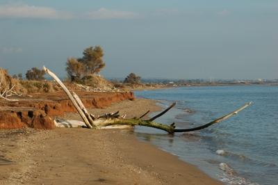 Scorcio della spiaggia a S.Marinella