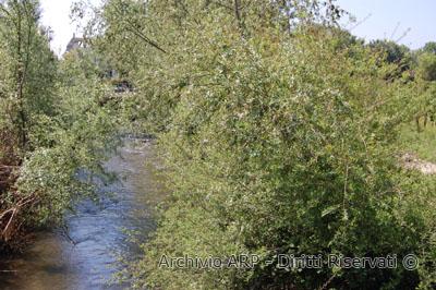 Scorcio del Rio Santa Croce